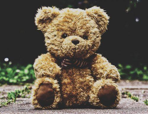 Wörter und ihre Geschichte: Der Teddybär